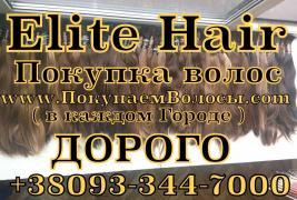 Продать Волосы Берестечко, скупка волос Берестечко, покупаем вол